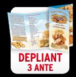 B.DEPLIANT 3 ANTE